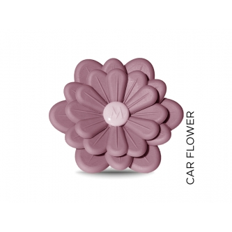 CAR FLOWER DIFFUSER POMPELMO E THE'